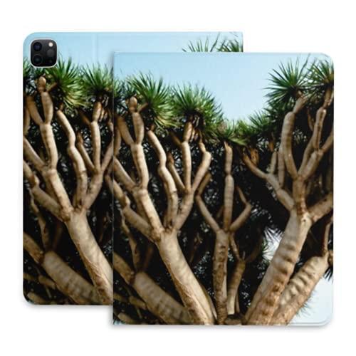 Estuche para iPad Pro 11 Estuche 2020 con portalápices, Delgado, liviano, tríptico, Estuche Protector Inteligente, Cubierta con Encendido/Apagado automático, árbol de dragón Tenerife Dracaena más g