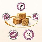 IAMS Naturally Friandises pour chiens 100 % viande de canard Qualité nutritionnelle et goût préservés – Faible en graisses – Sans : Céréales, OGM, sucres ajoutés, conservateur – Tube de 50g - Lot de 2 #1