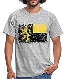Flagge Region Pfalz Männer T-Shirt, XXL, Grau meliert