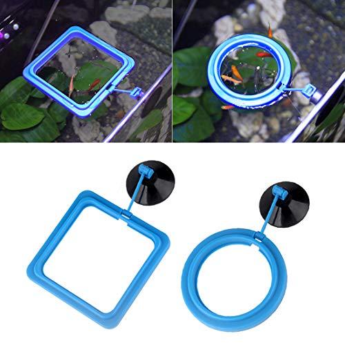 SENZEAL 2x Fisch Fütterung Ring mit Saugnapf Feeding Station Quadrat und Runde Kunststoff Blau (Normale Version)
