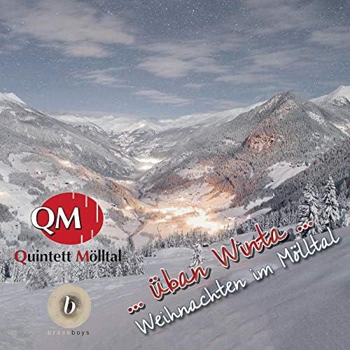 Quintett Mölltal & brassboys