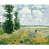 Pintar por Numeros para Campo de amapolas-Monet Adultos Niños Pintura por Números con Pinceles y Pinturas Decoraciones para el Hogar 40 x 50 cm Sin marco
