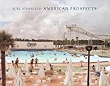 Joel Sternfeld: American Prospects