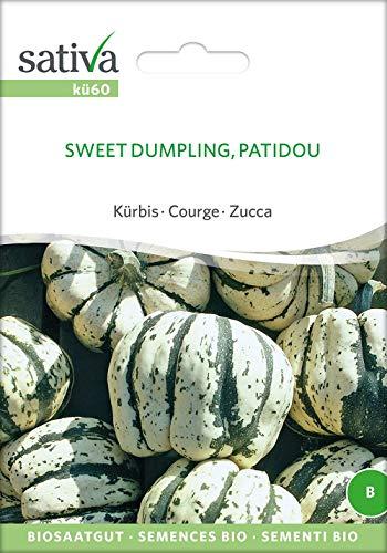Sativa Rheinau kü60 Kürbis Sweet Dumpling, Patidou (Bio-Kürbissamen)