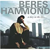 Songtexte von Beres Hammond - A Day in the Life