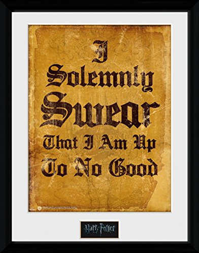 Harry Potter 1art1 Framed Collector Poster - Marauder's Map, I Solemnly Swear That I Am Up to No Good (16 x 12 inches)