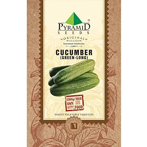 Pyramid Seeds Long Cucumber Plant Seed, 1.2 g (50 Seeds)
