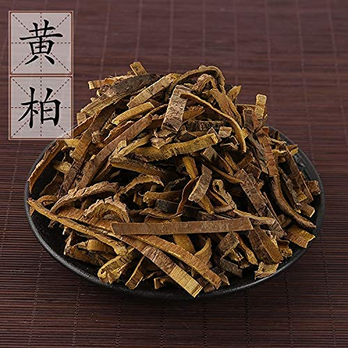 sswtail Max 76% Ranking TOP12 OFF Supply of 500 grams from Cortex Sichuan Phellodendri