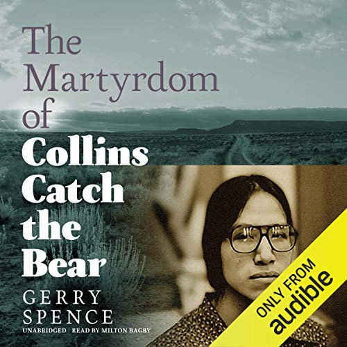 The Martyrdom of Collins Catch the Bear audiobook cover art