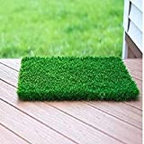 ❖ Can be use indoor and outdoor both.You can use it as carpet inside the house, for landscaping garden, for decorating balcony etc. It looks like natural grass and it is Environment friendly. ❖ Artificial Grass Sizes : We are offering different sizes...