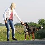 Premium Jogging-Leine | Sichere Metall-Komponenten | Umweltfreundliche Verpackung | Softer Neopren-Bauchgurt | 2 Gratis Booklets | Pets'nDogs - 9