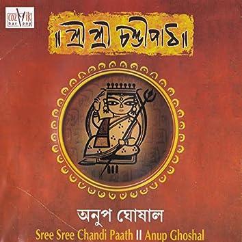 Sree Sree Chandi Paath, Vol. 1