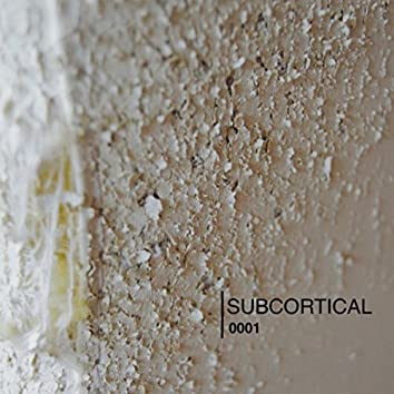SUBCORTICAL0001