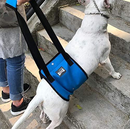 Diyafas Arns de Rehabilitacin de Apoyo para Perros Eslinga de Ayuda Auxiliar for Mascotas Discapacitados Lesionados Ancianos