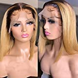 1B/27 Short Bob Lace Front Ombre Straight Transparent Lace Frontal T Part Wig 180% Density Brazilian Colored Remy Virgin Hair Blunt Cut Wigs for Women (10inch, 13X6X1 T Parting Wig)