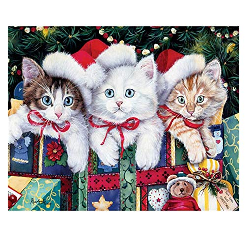 YYZCM Ölgemälde Geschenk DIY Anfänger Malen nach Zahlen Weihnachtsmütze und Katze Malerei Kit Home Haus Dekor-40*50cm(Ohne Rahmen)