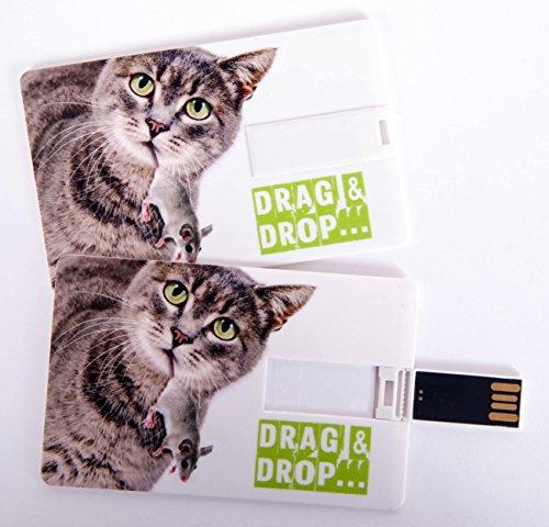Witziger USB Stick im Visitenkartenformat, Scheckkarte, Kreditkarte, 4 GB, Katze mit Maus im Maul Drag & Drop, ideal als Datenspeicher oder Geschenk