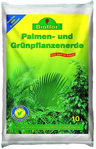 Bioflor® 30 L (3x10 L) Grünpflanzen und Palmenerde ideal auch für Kräuter