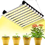 SZHLUX LED Grow Light 6×6ft Coverage 4000W Full Spectrum Growing Lamp for Indoor Plants, Linkable Plant Lights for Hydroponic Indoor Seeding Veg and Bloom Greenhouse Growing Light Fixtures