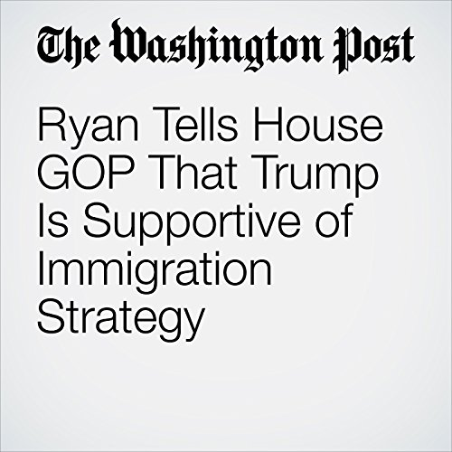 Ryan Tells House GOP That Trump Is Supportive of Immigration Strategy copertina