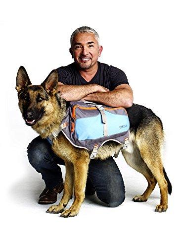 Cesar Millan BackpackTM - hond fluisteraar hond rugzak – goed gevoerde rugzak voor honden - duurzame wandelhond rugzak, Large, Blue & Grey