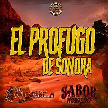 El Profugo de Sonora