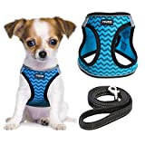 YIMEIS Dog Harness and Leash Set, No Pull Soft Mesh Pet Harness, Reflective Adjustable Puppy Vest for Small Dogs, Cats (XS, Blue)