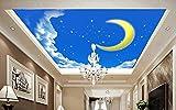 Mznm Custom 3D Ceiling Murals Wallpaper Moon Star 3D Wallpaper For Ceiling For Living Room Non-Woven Ceiling Murals-350X250Cm