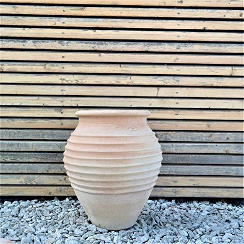 Kreta-Keramik | handgefertigte Terracotta Amphore | frostfest und hochwertig | 50 cm | toller Blickfang/Dekoration im Außenbereich, Garten/Haus, Ficus