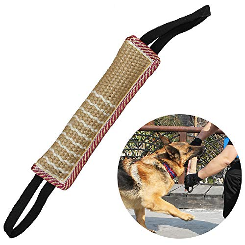 Best Dog Training Toys