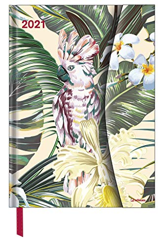 Jungle 2021 - Diary - Buchkalender - Taschenkalender - 16x22: Magneto Diary