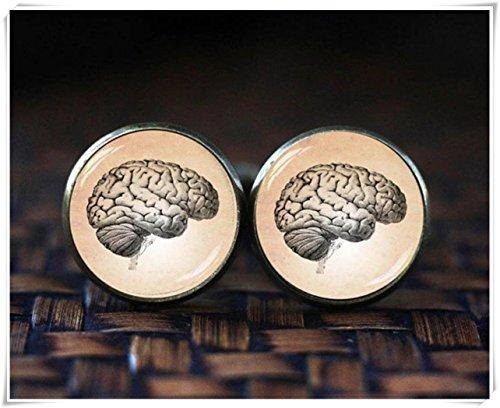 Gemelos cerebrales, anatomía del cerebro humano, regalo médico, gráfico de arte vintage