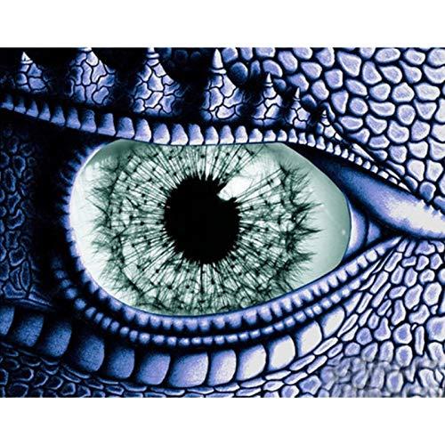 Diamant verf borduurwerk het oog van de draak mozaïek schilderij volledige ronde handgemaakte puzzel decoratie van uw huis