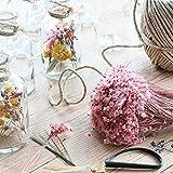 Trockenblumen im Glas mit Kerzen, Trockenblumen Set mit Vase, 2 Stück, getrocknete Blumen deko, Vase mit Blumen bunt, pflanzen im glas, flaschen Kerzenhalter, Geschenke für Frauen, ewige Blumen - 3