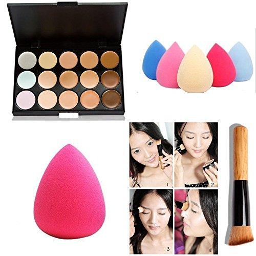 Paleta profesional de maquillaje para mujeres de TaoNaisi, 15 tonos de correctores, una esponja y una brocha