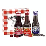 Smucker's Red Raspberry, Strawberry, and Blueberry Fruit Syrups, Variety Pack of 3, Gift Box Set