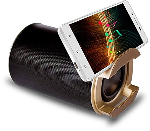 Intex Bluetooth Speaker Premium Gold Beats Buy Online In Bahamas Missing Category Value Products In Bahamas See Prices Reviews And Free Delivery Over Bsd80 Desertcart
