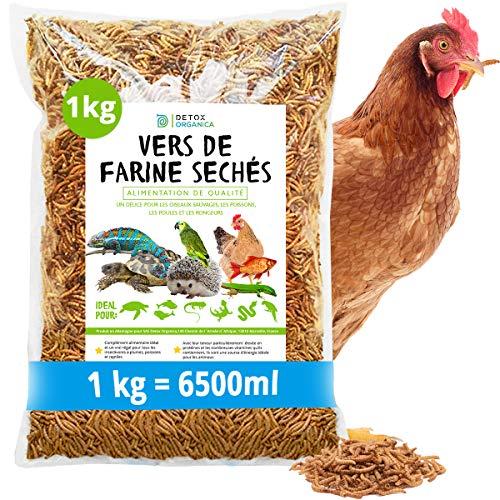 vers de Farine séchés, 1kg Correspond à 6500ml, Friandises pour Oiseaux, Poissons, Tortues, Hérissons, Rongeurs et Reptiles