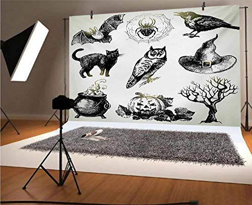 Vintage Halloween 8x6 FT Vinyl Photography Background Backdrops,Halloween Related Pictures Drawn by Hand Raven Owl Spider Black Cat Background for Graduation Prom Dance Decor Photo Booth Studio Prop B