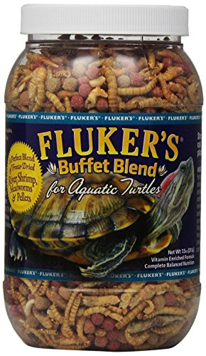 Best Turtle Food Brand