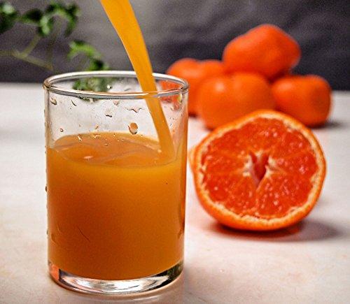 母の日 早割 ギフト 岩武果樹園 搾りたてのみかん果汁100パーセントのストレートジュース 有田みかん 産地直送
