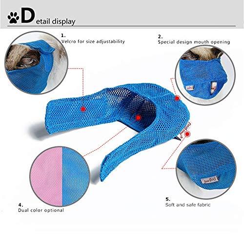 GuangZhou Pflegetasche Waschen Baden Katze Hundedusche Maulkorb für Katzen die Fellpflege, Duschbad, Injektion, Medikamente und Schnitte (Grün)