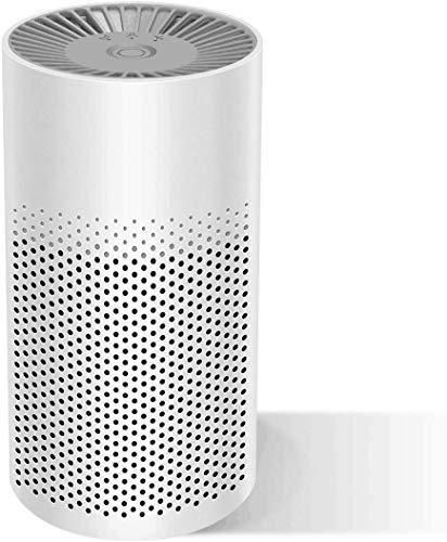 Purificador de aire portátil para el hogar con filtro HEPA verdadero, filtro de aire con modo reposo filtro aire USB para alergias domésticas fumadores polvo alergias bacterias polen olor ambientador