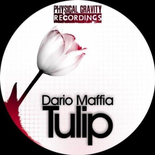 Dario Maffia