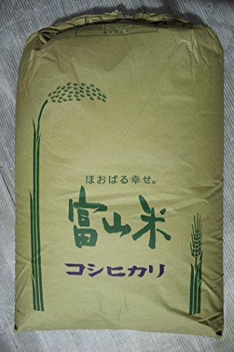 【玄米】うおづ産こしひかり (30kg) 富山米 コシヒカリ 令和2年産