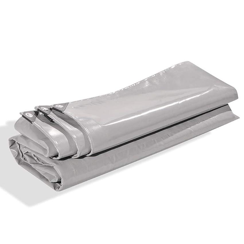 エレクトロニック宿題をするライトニングLCAIHUA 防水シート灰白色防火暗号化錫メッキボタンホール屋外の、PVC、サイズはカスタマイズすることができます (Color : White, Size : 5X7M)