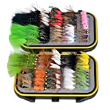 OutdoorPlanet Seco Fly, Wet Fly, Nymph and Streamer - Señuelo de mosca + caja impermeable para moscas de pesca de trucha, 100 unidades