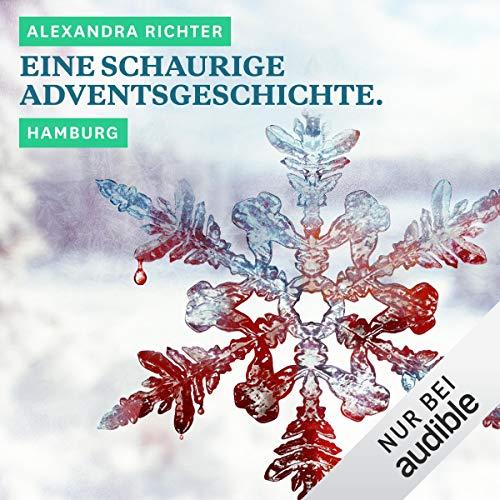 Eine schaurige Adventsgeschichte. Hamburg Titelbild