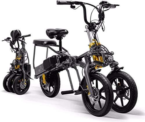 Woodtree Bicicletas Plegables eléctricos, 250W 48V Bicicleta eléctrica Inteligente aleación Ligera Neutra...