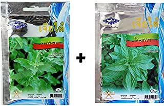 Love wood Thai Holy Basil and Sweet Basil Seeds 1 sets From Chia Tai, Thailand